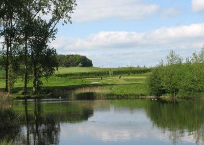 2013-flaxby-pond