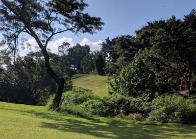 Mehta Golf Club